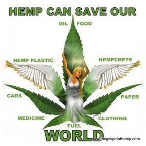 Hemp can Save Our World