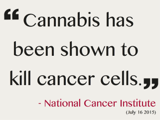 CannabisKillsCancerCells.png
