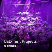 LED Tent Project Thumb.png