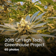Q1 2015 Greenhouse Thumb.png
