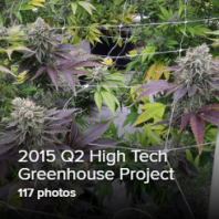 Q2 2015 Greenhouse Thumb.png